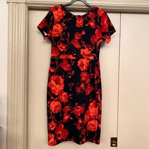 Enfocus Studio Red/Navy Short Sleeve Sheath Dress